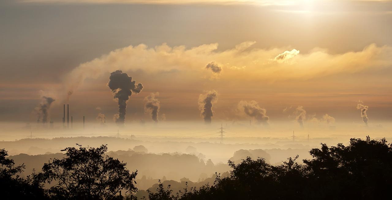Relación entre Biomasa y Carbono