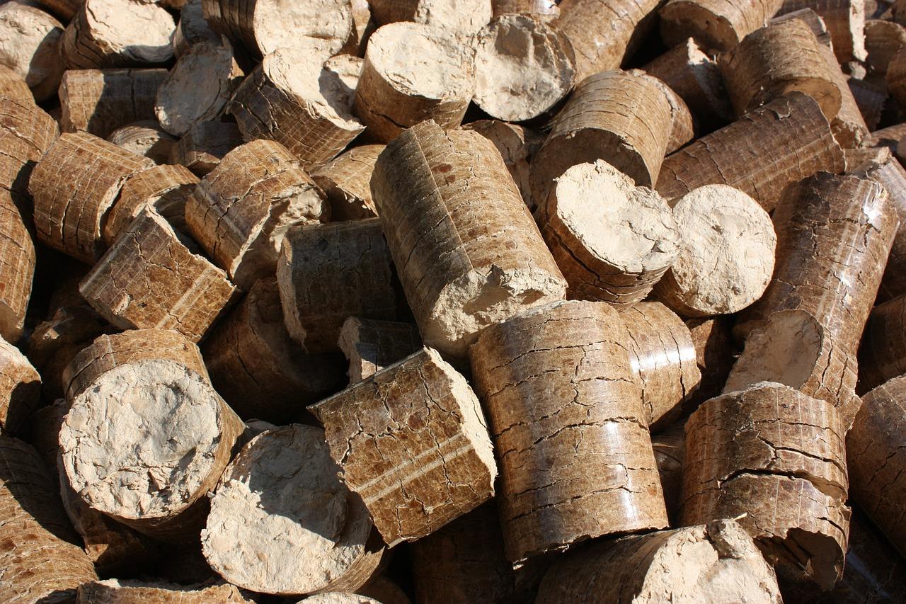 Briquetas de Biomasa