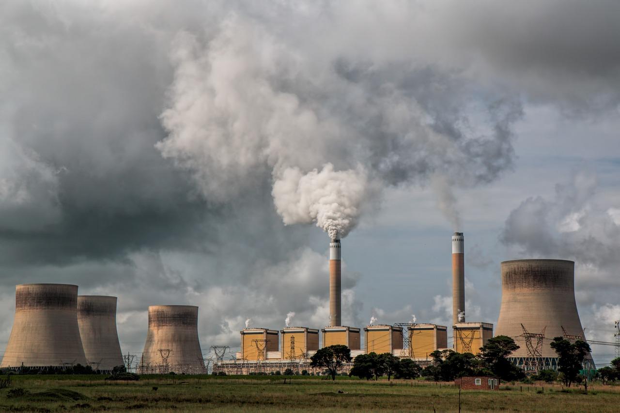 Quema simultánea de Biomasa y Carbón