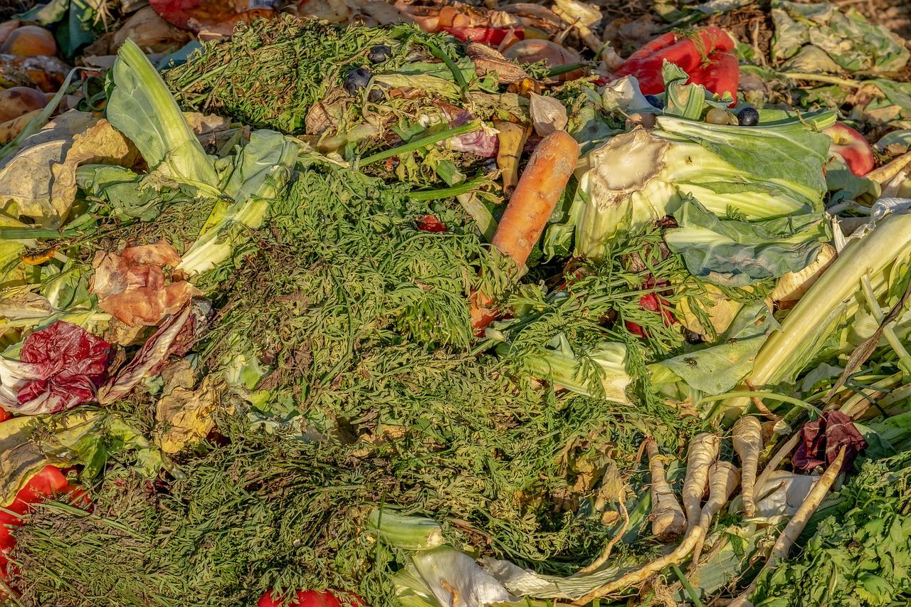 Cómo llegar a la Biomasa Química