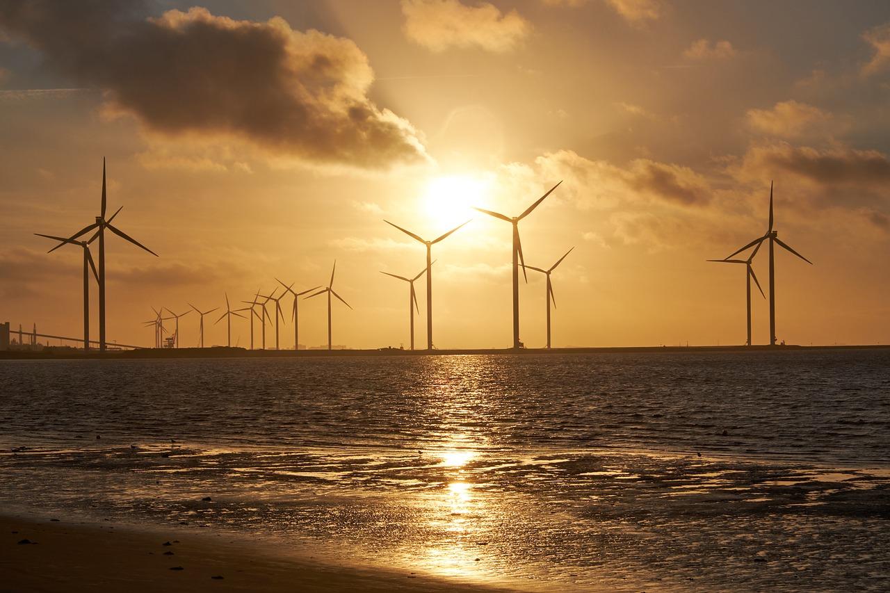 Los proyectos eólicos marinos europeos superan la desaceleración del Covid-19
