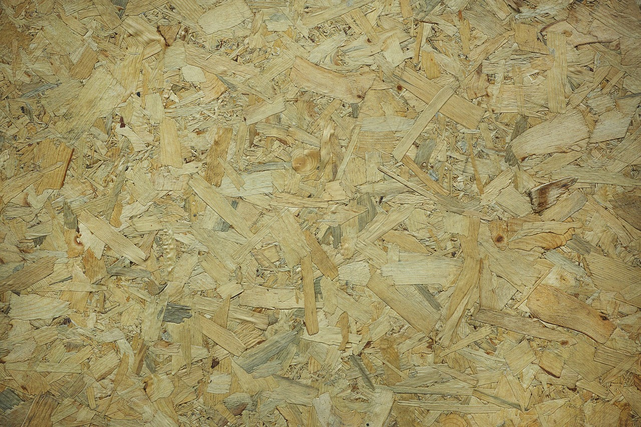 Fibra de biomasa; Todo lo que necesita saber