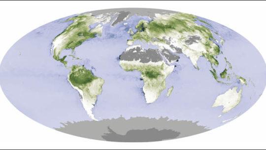 Ventajas de la biomasa respecto a combustibles fosiles